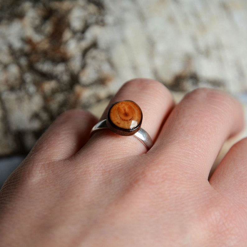 Natural larch wood ring  Woodland tree nature ring  Wooden image 0