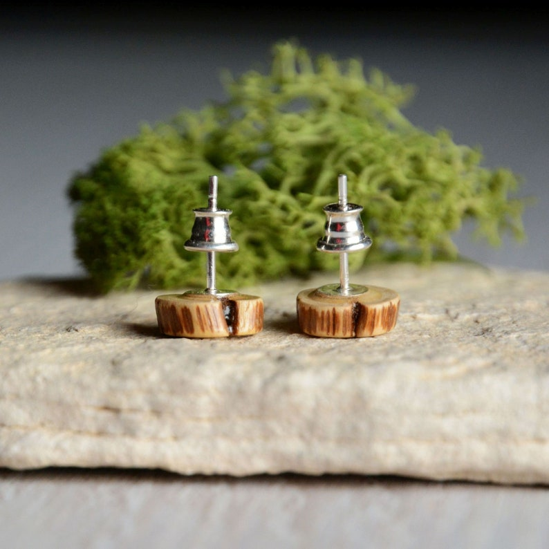 Raw earthy ear studs made from reclaimed wood  tree branch image 0