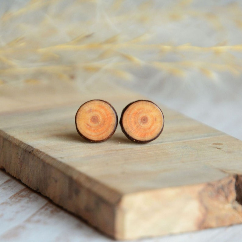 Wooden earrings with sterling silver posts for nature lover  image 0