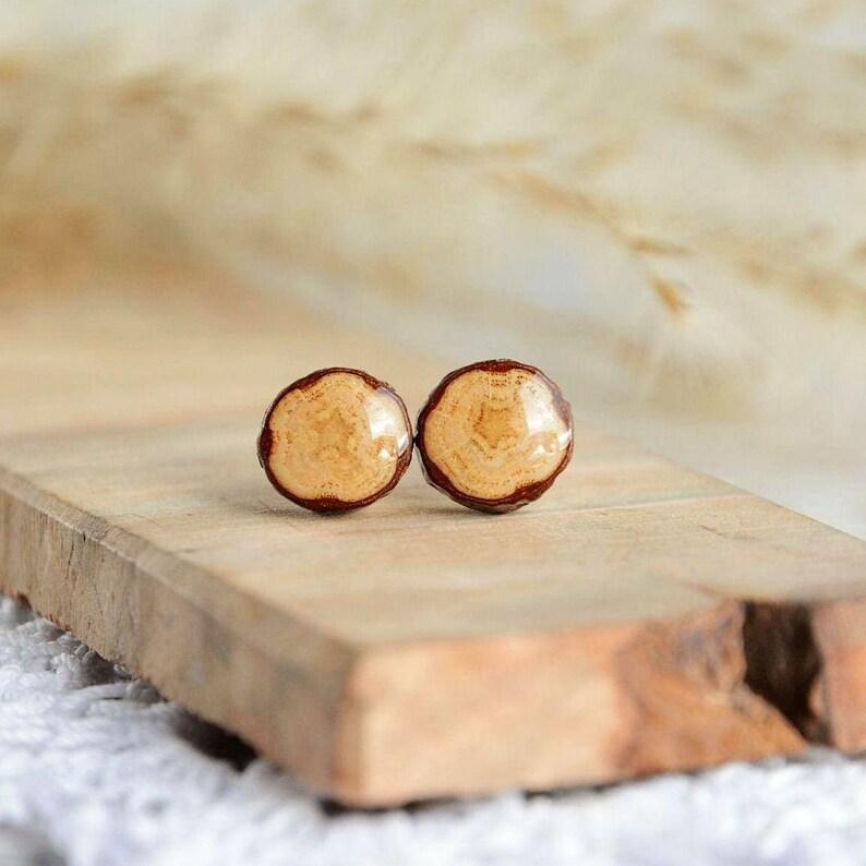 Wood dot stud earrings made from oak tree branch  sterling image 0
