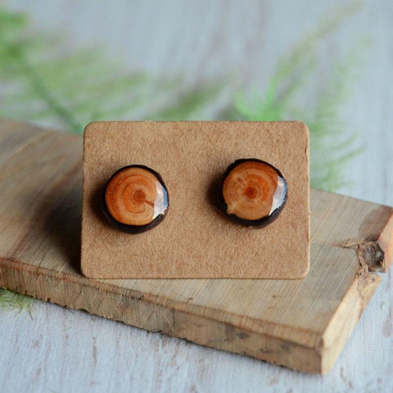 Wood stud earrings  Simple unisex ear studs  Tree branch image 0