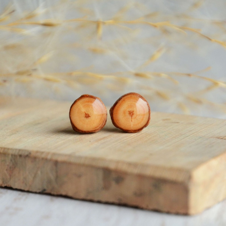 Pine wood earrings made from reclaimed tree branch  minimal image 0