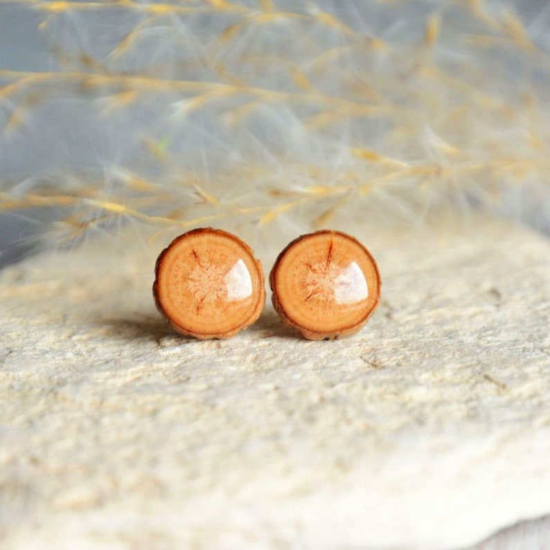 Wooden stud earrings  natural woodsy forest jewelry with gift image 0
