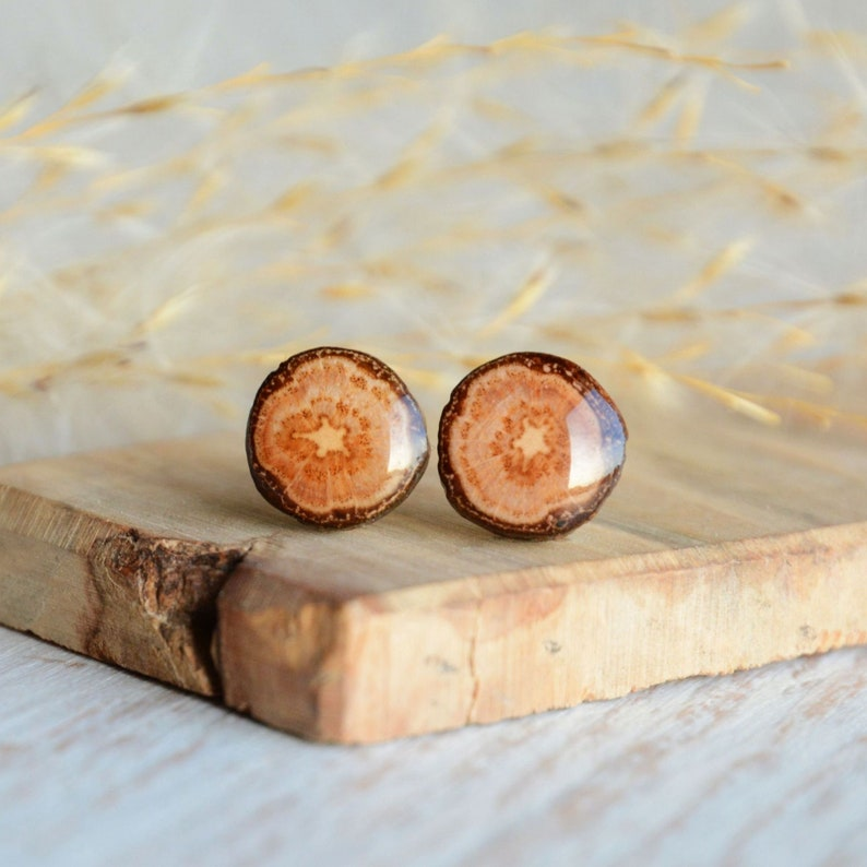 Wooden studs earrings  natural oak wood jewelry made from image 0