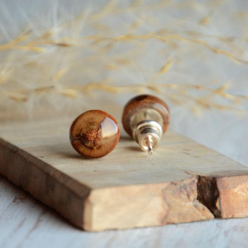 Earthy wooden earrings wood stud earrings natural wooden image 0