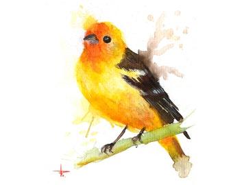 Spring Migrant - 5.5 x 4.5 in - ORIGINAL Watercolor, Birds, UNFRAMED, Painting by Bruno M Carlos