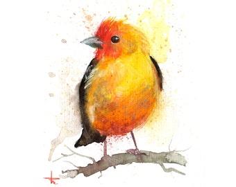 Western Color - 5.5 x 4.5 in - ORIGINAL Watercolor, Birds, UNFRAMED, Painting by Bruno M Carlos
