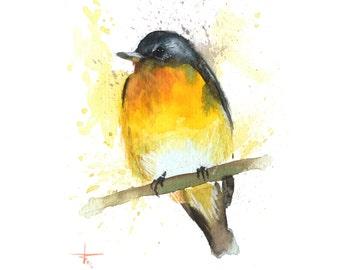 Gray and Orange Bird II - ORIGINAL Watercolor - 5.5 x 4.5 in - Birds, UNFRAMED, Painting by Bruno M Carlos
