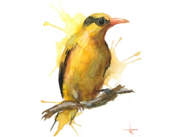 Black-naped Oriole - ORIGINAL Watercolor - 5.5 x 4.5 in - Birds, UNFRAMED, Painting by Bruno M Carlos