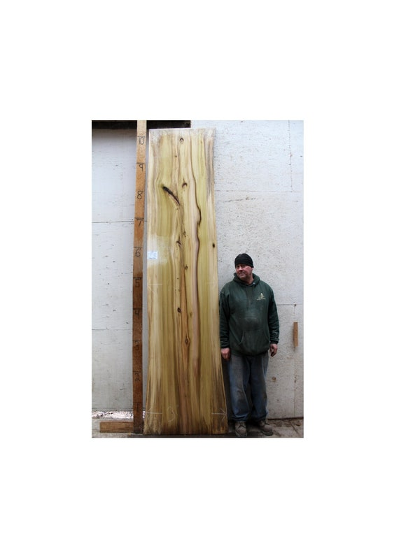 Diy Live Edge Bartop Counter Top Natural Tulip Raw Wood Slab Etsy