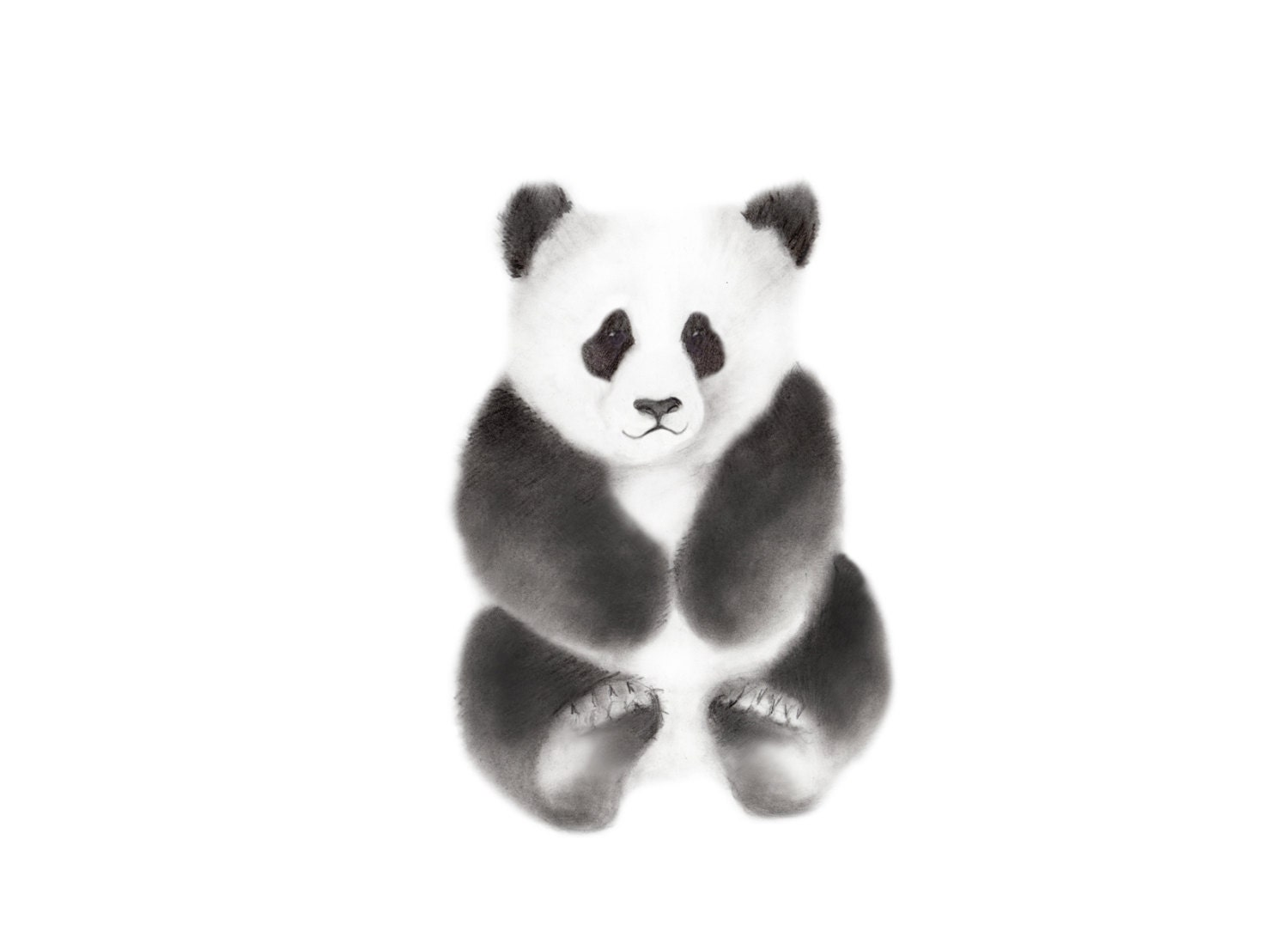 Panda nursery art animal pencil drawing panda bear nursery sketch print gender neutral baby grey wall decor black and white nursery