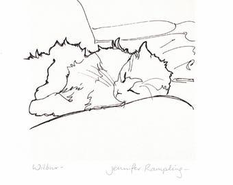 Wilbur - Giclee print from an original drawing.