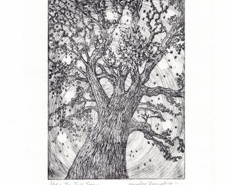 Etching of a Tree - 'The Tall Tree' by Jennifer Rampling