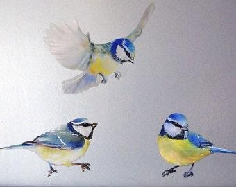 Set of 3 Birds, Wall Decal Bird, Birds Wall Stickers, Nursery Decal, Fabric Wall Sticker (Not Vinyl), 3 Blue Tit Wall Decal, Watercolor Bird