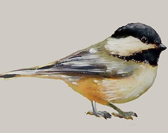Chickadee Wall Decal, Bird Wall Sticker, Get Well Gift, Watercolor, Vinyl, Nursery, Black-Capped Chickadee