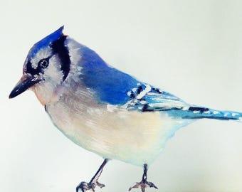 Blue Jay Wall Decal, Bird Wall Sticker, Get Well Gift, Watercolor Fabric Wall Sticker (Not Vinyl), Nursery, Blue Bird, Newborn Gift