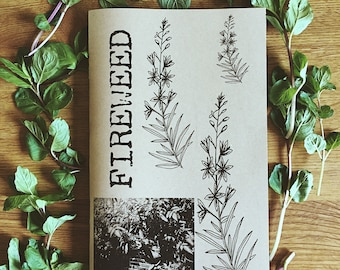 Herbal Zine Fireweed: Issue #2 (pdf file)