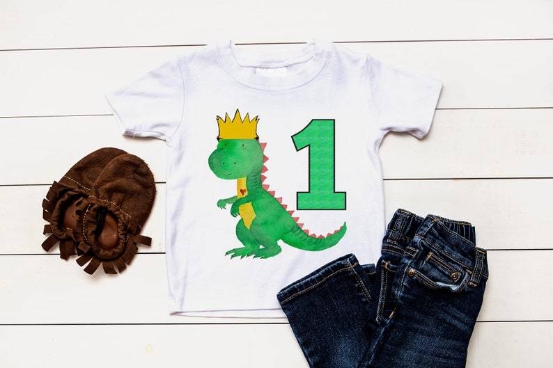 Dinosaur First Birthday Shirt One Year Old Dino 1