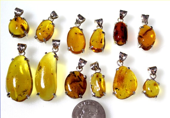 Wholesale Liquidation lot 12 Amber flying Insects Spider Bug .925 Sterling Silver Pendants biggest 32mm
