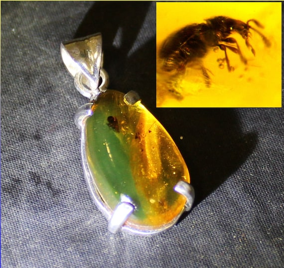 Outstanding 50Mio old bug insect fossil Dominican Natural Green Amber .925 Sterling Silver Pendant 1.3inch