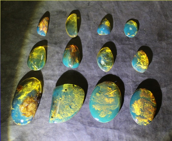 Wholesale liquidation lot, 12 Dominican Clear Blue Amber polished Stone Cabochon biggest  35mm