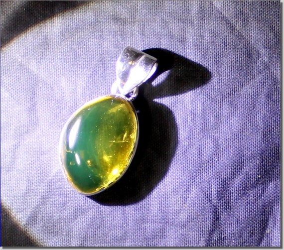 Dominican Natural Clear Green Amber Fossil Insect Bug .925 Sterling Silver Pendant 30mm