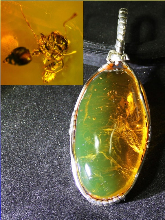 2.5inch Frozen in time, 50Mio years old Bee flying Insect Fossil Dominican Natural Clear Green Amber .925 Sterling Silver Pendant