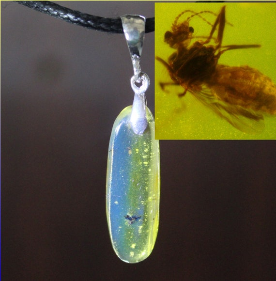 Very Rare Insects in Blue Amber Clear .925 Sterling Silver Pendant with 50Mo years old  Insects Bee Fossil