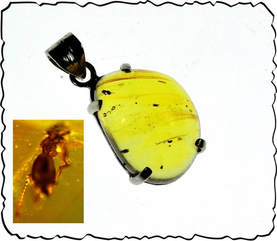 Splendid 0.9inch Natural Green Flying Insect Fossil Amber .925 Sterling Silver Pendant