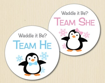 BABY PENGUIN Gender Reveal Party Stickers, Winter Wonderland Baby Shower, Waddle It Be, Team He, Team She, Pink, Blue, Boy, Girl, Snowflakes
