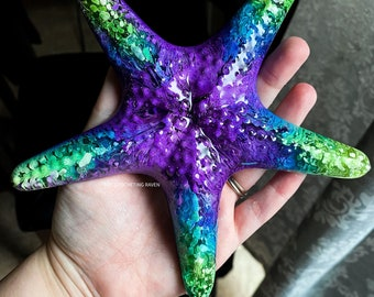 Starfish Wall Decor Petri Art