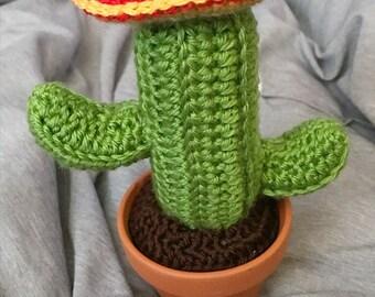 Cactus Sombrero Crochet Cactus Decor Crochet Cactus