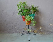 Multicolored plant carrier. Brand Pola France 1950