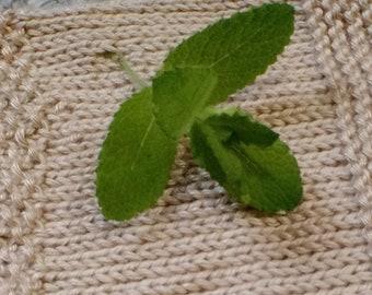 Peppermint Yarn