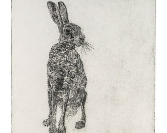 Lepus   Giclee Print