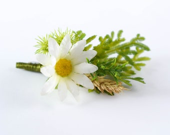 Dried Flower Boutonniere for Men, Boho Wedding Boutonniere for Groom, Groomsmen, White Chamomile Boutonniere