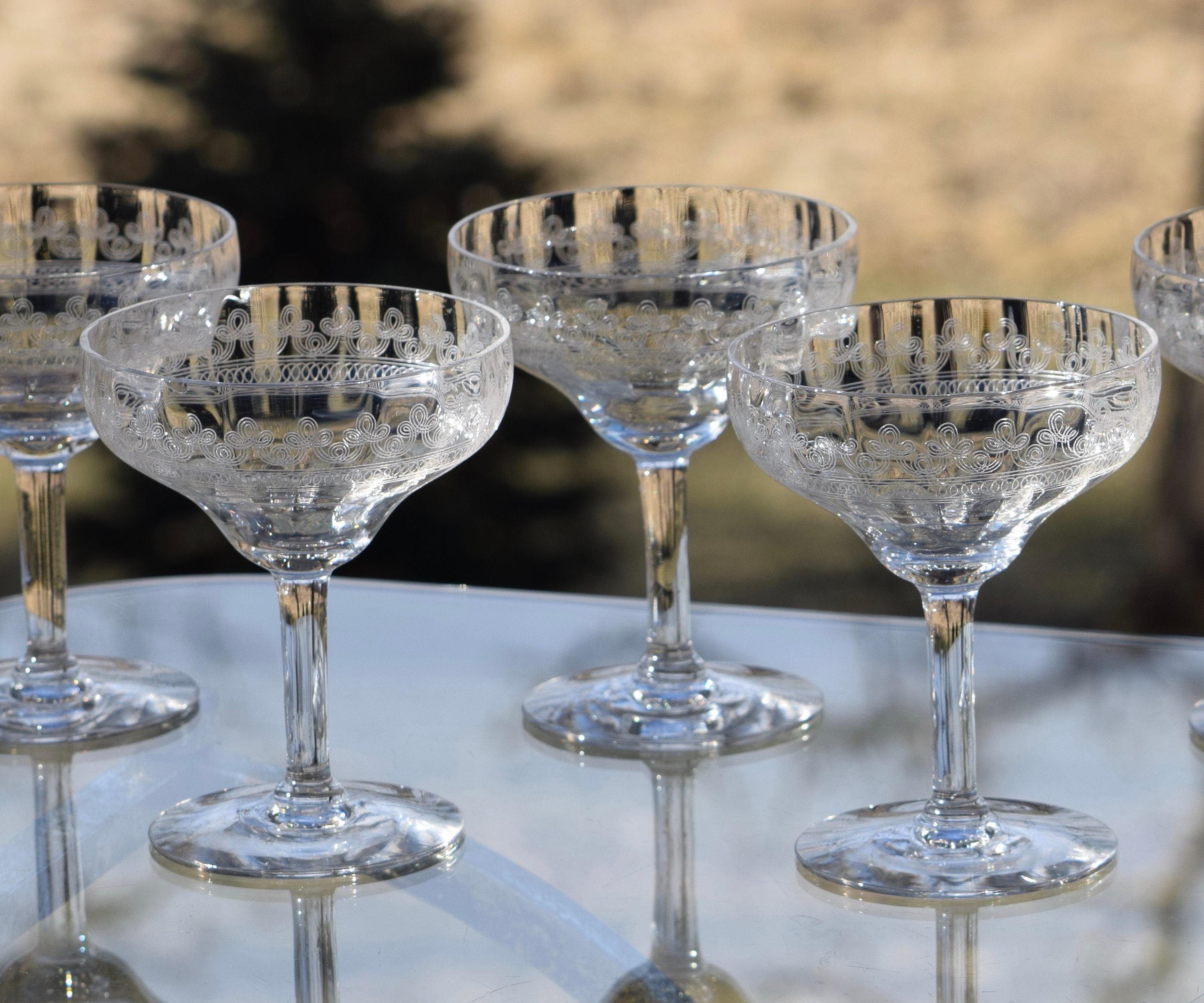 Vintage Needle Etched Cocktail Glasses Set Of 6 Circa 1920 S Antique Needle Etched Champagne Coupes Antique Cocktail Coupe Glasses