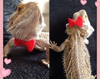 Bearded dragon Bow tie