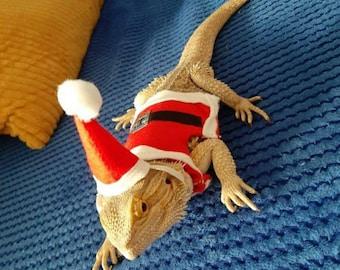 christmas fancy dress, santa, Bearded dragon clothes