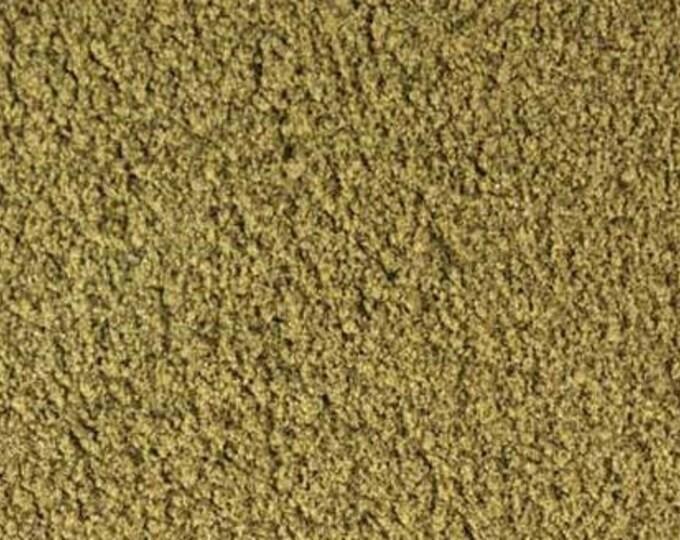 Bladderwrack Powder - Certified Organic