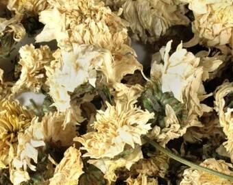 Chrysanthemum Flowers - Certified Organic