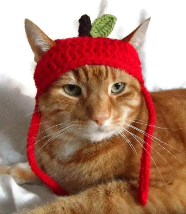 Crochet Apple Cat Hat Hats for Cats Teachers Pet Hat Pet