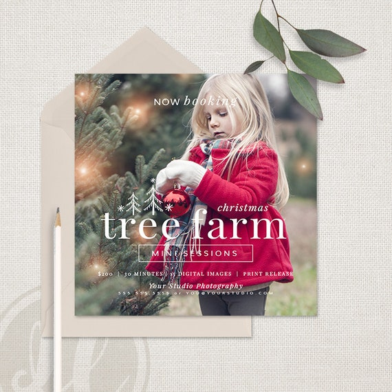 Christmas Tree Farm Mini Sessions.Christmas Tree Farm Mini Session Template Tree Farm Marketing Board Instant Download Photoshop Template