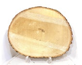 "Wood Stump Saucer for Large Kokedama, Sliced Wood Saucer 10~12"" diameter or oval"