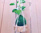 Macrame Jute hanging with...