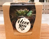 Gift box mini kokedama! M...