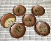 Rakusai Takahashi, Ceramic Saucer, Shigaraki Ware, fourth generation of Rakusai, Rustic, Traditional, Antique