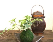Kokedama - Moss ball with...