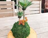 Kokedama - Artificial -care free plant Kokedama Arrangement, succulent arrangement.