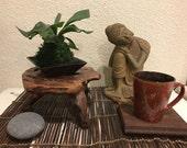 Small Staghorn Kokedama - Unique house plant decoration